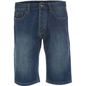 Dickies Michigan Shorts 30 Blå