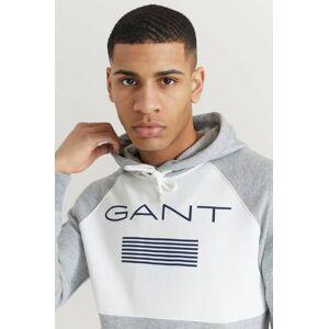Gant Hoodie Gant Stripe Sweat Hoodie Grå
