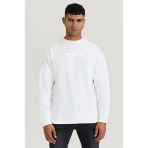 Stayhard Mini Sweatshirt Crew With Print Vit