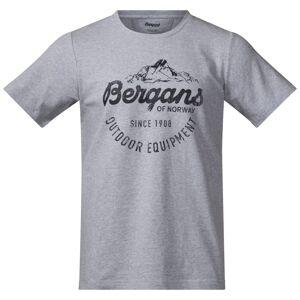 Bergans Classic Tee Men´s Grå