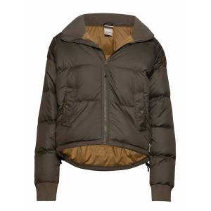 The North Face W Dwn Paralta Puffer Fodrad Jacka Grön The North Face