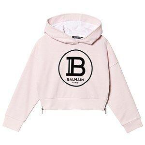 Balmain Logo Cropped Hoodie Pink 16 years