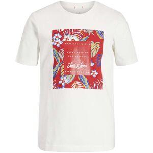 Jack & Jones Tropicana T-Shirt, Cloud Dancer 152