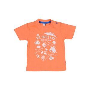 BFC BABYFACE T-shirt Boy 0-24 months