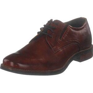 Bugatti Malco Cognac, Kengät, Matalapohjaiset kengät, Juhlakengät, Ruskea, Miehet, 43