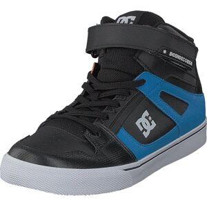 DC Shoes Pure High-top Se Ev Black/Red/Blue, Skor, Sneakers & Sportskor, Chukka sneakers, Grå, Barn, 30