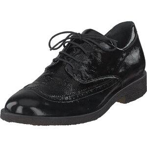Angulus Brogues W. Cap-toe And Laces Black Patent, Kengät, Matalat kengät, Juhlakengät, Musta, Naiset, 37