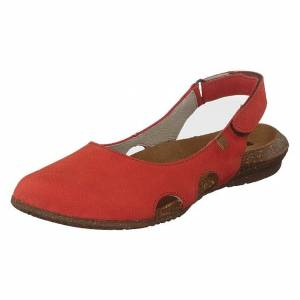 El Naturalista Wakataua Coral, Dame, Shoes, brun, EU 36