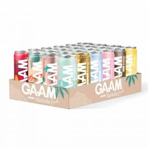 GAAM 24 X Gaam Energy/ Bcaa Drink, 330 Ml