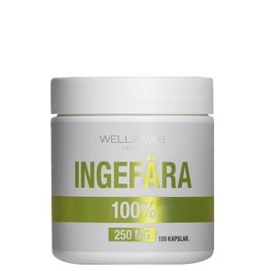 WellAware Back on Track WellAware Ingefær 250 mg, 100 kapsler