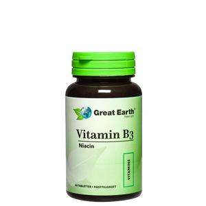 Great Earth Vitamin B3 Niacin, 60 tabletter