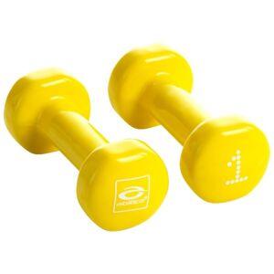 Abilica DumbBells 1-3 kg 1 kg