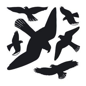 Herma 5999 Herma Vindus advarsler fugl sort, 1 ark (Kan sendes i brev)