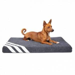 Basic WellB Ortopedisk Hundmadrass (XL)