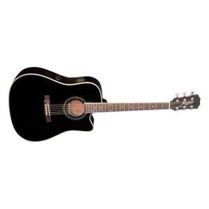 Morgan W 310 SCE BLK gitar