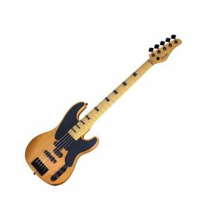 Schecter MODEL-T Session-5 Aged Natural Satin