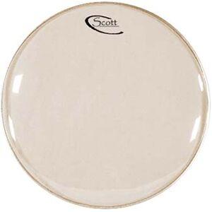 """Scott 10"""""""" Banjo Head White White"""
