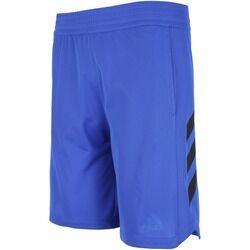 adidas Bermuda adidas Sport - Masculina - AZUL