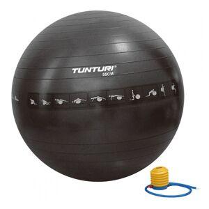 Abilica Tunturi Anti Burst Gym Bold 55, 65, 75 og 90 cm 90 cm (Fitnessbolde)