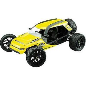 Amewi Hammerhead børsteløs 1:6 RC modell bil elektrisk monstertruck RWD RtR 2,4 GHz