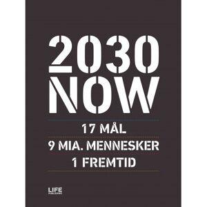 Susanne Sayers 2030 NOW (DK): 17 MÅL - 9 MIA. MENNESKER - 1 FREMTID