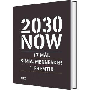 2030 Now - Dk - Susanne Sayers - Bog