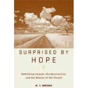 Canon Surprised by Hope by Canon N. T. Wright