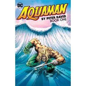 David, Peter Aquaman by Peter David Book One (1401277462)