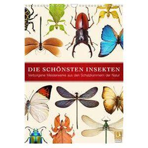 ART Die schönsten Insekten (Wandkalender 2020 DIN A3 hoch) (3670332847)