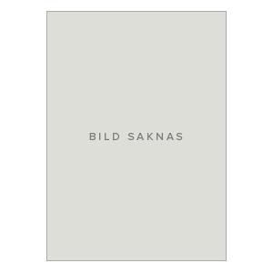 Blokdyk, Gerardus Infonomics Principles A Complete Guide - 2020 Edition (0655911642)