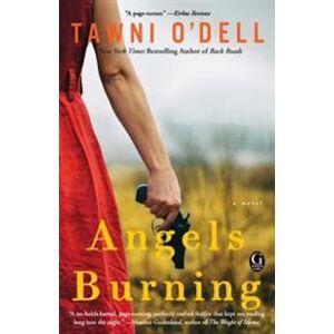 Dell Angels Burning (1476755957)
