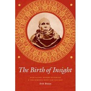 Braun Erik The Birth of Insight (022641857X)