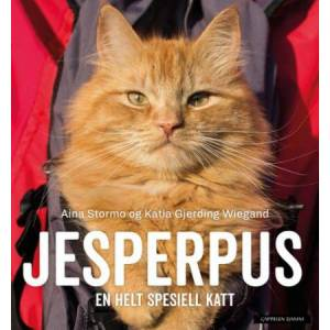 Jesperpus - en helt spesiell katt