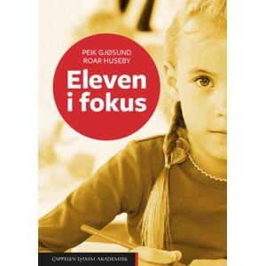 Peik Gjøsund Eleven i fokus
