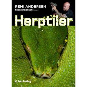 Remi Andersen Herptiler