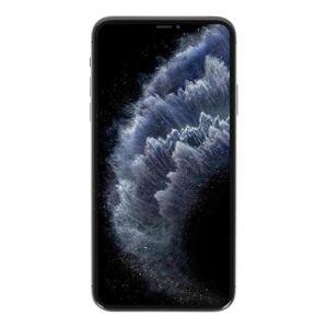 Apple iPhone 11 Pro Max 256GB grau