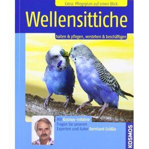 Gebraucht: Bernhard Größle Wellensittiche: Halten & pflegen, verstehen & beschäftigen