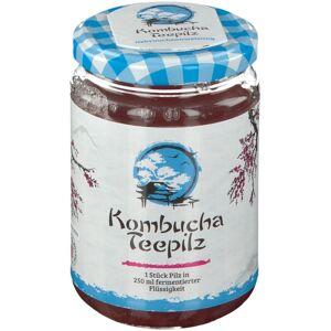 Gall Pharma Kombucha Teepilz 1 St Tee