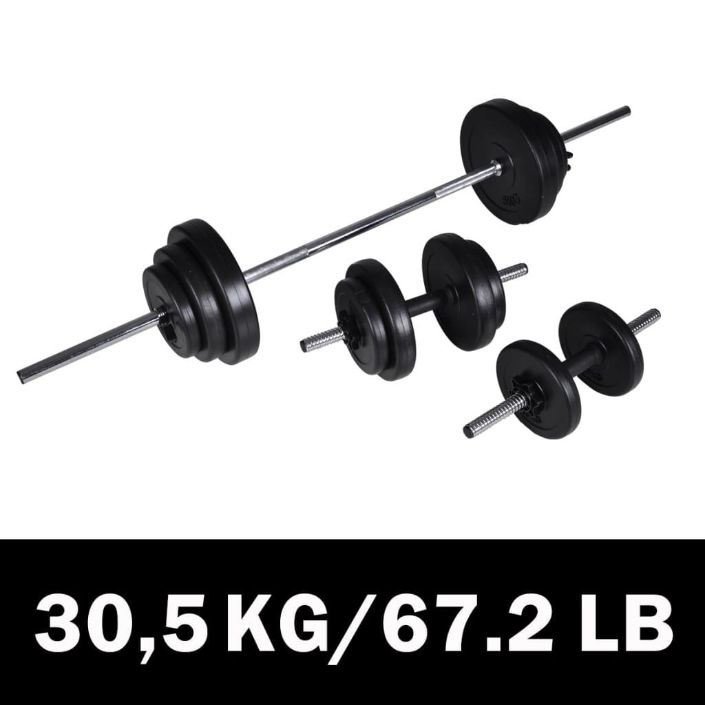 vidaXL Haltère 2 pcs 30,5 kg