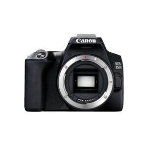 Canon 250D reflex numérique