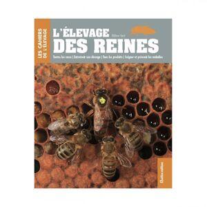 Lubéron Apiculture L'élevage des reines, Gilles Fert
