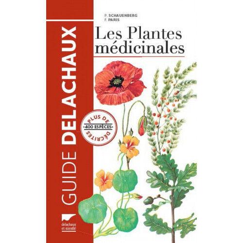 Lubéron Apiculture Les Plantes médicinales