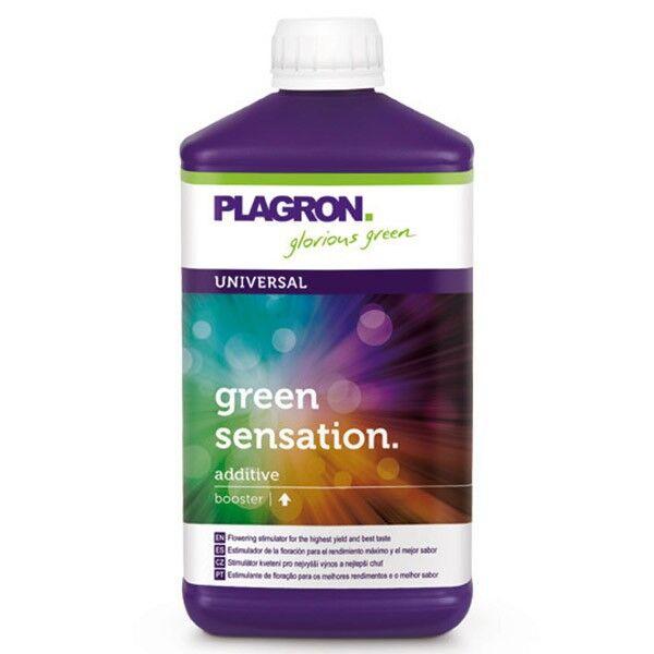 """PLAGRON """"plagron Green sensation 1L , booster de floraison , augmente les principes actifs"""""""