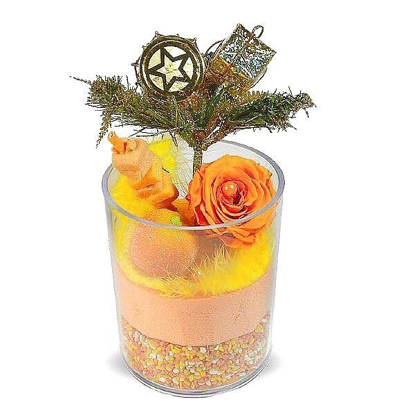 Roses d'Antibes NOEL EN AUTOMNE