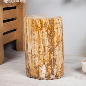 Wanda Collection pouf bois pétrifié fossilisé