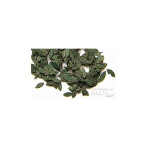 Plus model 283 : grüne Kirsch-Blätter 1:35