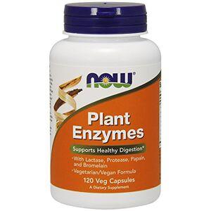 NOW Enzimas Digestivas de Plantas  pote 120 cápsulas