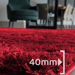 Casen Tapete para Sala Belos Pelos Retangular 300x200cm  Cor:Vermelho