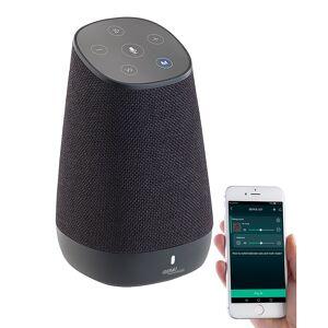 auvisio Mobiler WLAN-Multiroom-Lautsprecher mit Amazon Alexa und Akku, 30 Watt