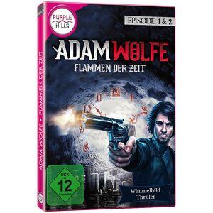 """Purple Hills Wimmelbild-Spiel """"Adam Wolfe - Flammen der Zeit"""", für Windows"""